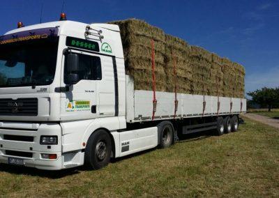 Odenbach-Transporte-006