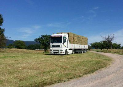 Odenbach-Transporte-007